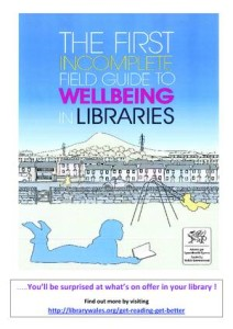 RTEmagicC_wellbeing_poster.pdf